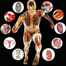منابع آزمون دکتری علوم ورزشی-بیومکانیک ورزشی