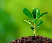 منابع آزمون دکتری زیست شناسی گیاهی سیستماتیک و بوم شناسی