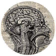 منابع آزمون دکتری علوم شناختی