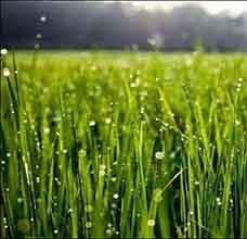 منابع آزمون دکتری علوم و مهندسی آب هواشناسی کشاورزی