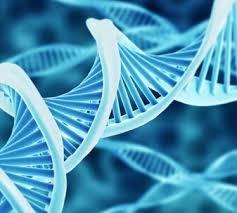 منابع آزمون دکتری ژنتیک مولکولی