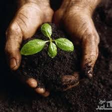 منابع آزمون دکتری مدیریت حاصلخیزی و زیست فناوری خاک